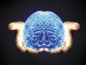 brain-pic