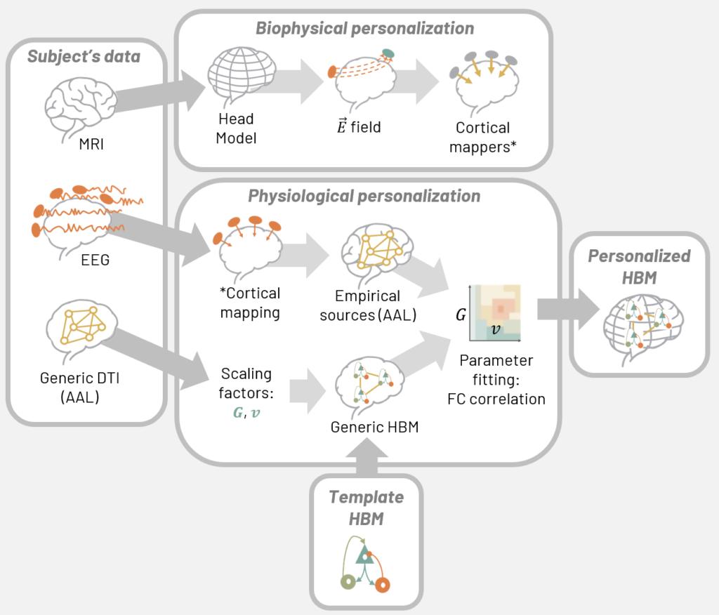 personalized-hybrid-brain-model-generation-uising-subject-mri-eeg-and-dti-data